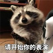 @Yangzhedi