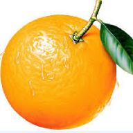 @orange8Beans