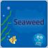 @seaweedfs