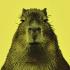 @capybara-language