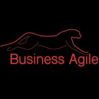 @BusinessAgile