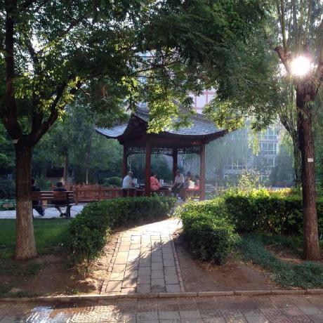Yu Ang Zhang
