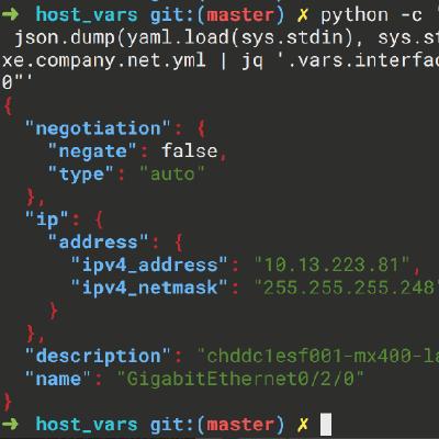 GitHub - cidrblock/netcopa: Network Configuration Parser