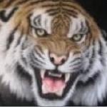@TigerBetree