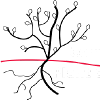 @Computational-Plant-Science