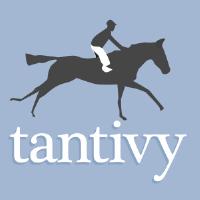 @tantivy-search