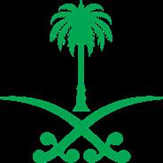 @saudisproject