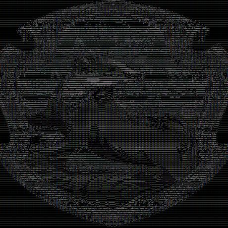 Avatar of cyrustabatab