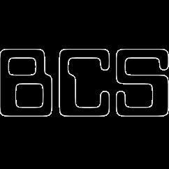 BCS-io