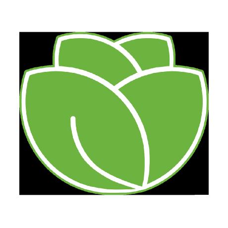lettuce-core