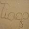 @tiagocoutinho