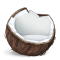 @coconut-pm