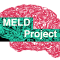 @MELDProject