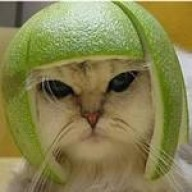 @Melon-PieldeSapo