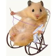 @master-hamster