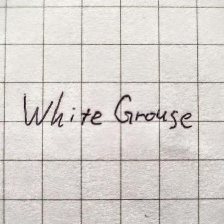 WhiteGrouse