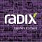 @Radix-Engineering-and-Software