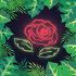 @Rose-Hacks