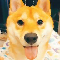 @zhiyue