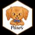 @paws-r