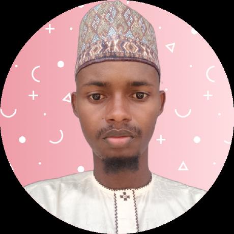 Auwalu Hamza's avatar