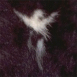 @purplecabbage