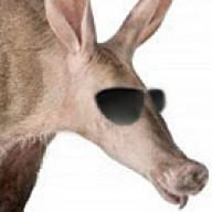 Aardvark Awesome