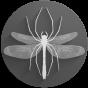 @spiderflystudios