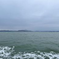 @JianfuLi