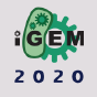 @igemsoftware2020