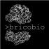 @bricobio