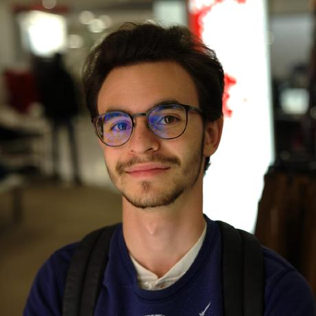 Raphael Vigee