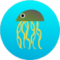 @jellyfishcoder
