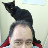 @paulohrpinheiro