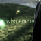 @whalemare